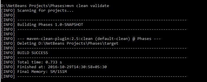 mvn-clean-validate